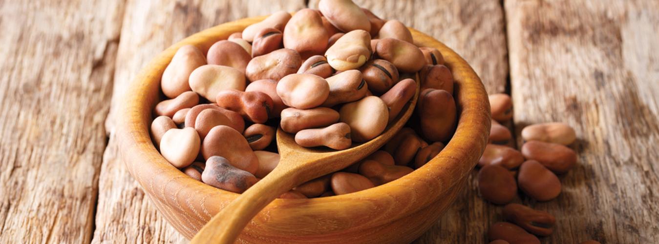 Egyptian Beans(Foul)